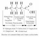 Composition of Fatty Acids