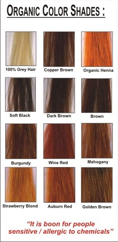 Organic Hair Color Dye Shades - View Specifications & Details of ...