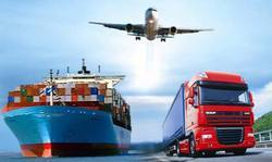 International Freight Courier Services