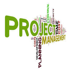 Project Work Consultancy Services