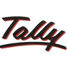 Tally Software Support