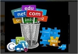 Domain / Hosting Services