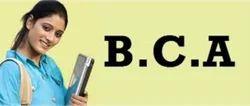 BCA Courses