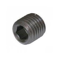 High Tensile Steel Grub Screw