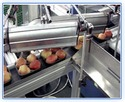 Food Drying Air Knife System
