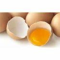 Eggzyme GO - Fungal Glucose Oxidase