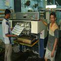 Header Card Printing Service