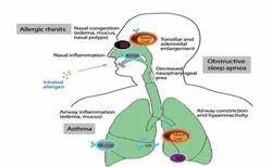 Allergy & Homoeopathy