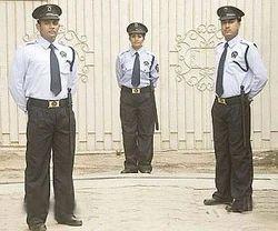 Ex-Servicemen Security Services