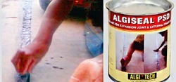 Expansion Joint Sealant Algiseal PSD