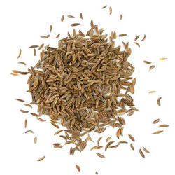 Caraway Seeds - Wholesale Price for Shah Jeera in India