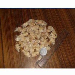 Tabebuia Argentea Seeds