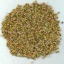 Spices-Coriander Seed Split