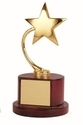 Golden Star Trophy