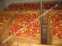 Fruit Cold Storage