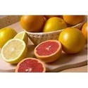 Citrus Bioflavonoids, Pack Size: 25 Kg, Packaging Type: Drum