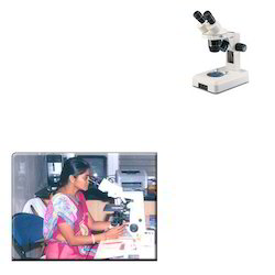 Stereo Zoom Microscopes for Medical Industry