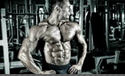 Muscles Shaping Physical Training