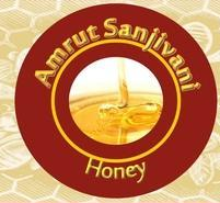 Amrut Sanjivani Honey, Packaging: 500 Gm