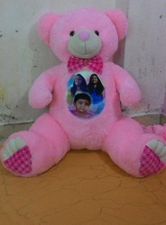 Teddy Bear with Photos