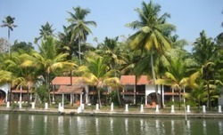 Spicy Kerala And Relaxing Goa