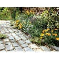 Garden Path Paving Slabs