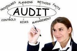 Statutory and Non-Statutory Audits