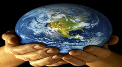 CDM Advisory & Carbon Funding