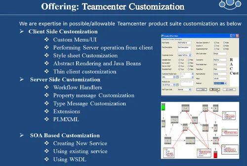 teamcenter customization pdf
