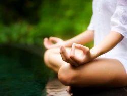 Yoga And Meditation Service
