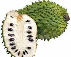 graviola fruit in bangalore dating
