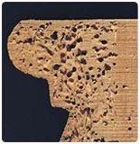Wood Borer