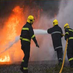 Fire Fighting Security Guards Service