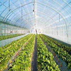 HDPE温室白色遮阳网