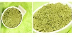Green Moringa Oleifera 100% High Quality Mulberry Leaf Powder, For Medical, Packaging Type: Pouch