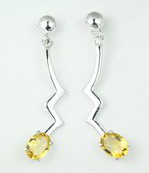 Silver Gemstone Long Earring