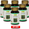 Garcinia Cambogia Herbal Weight Loss Supplement