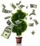 Ivestment Advisory Services MF