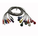 Holter Cable