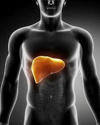 Liver Enlargement Treatment Service