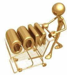 Premium Domain Registration