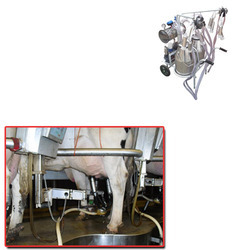 Cow Milking Machines for Dairy Plants