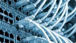 Networking and Network Management Services.