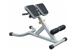 Viva 45 Degree Hyperextension IF-45