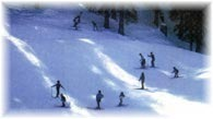 Snow Skiing Adventure Tours