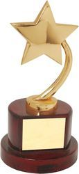 Wooden Base Star Theme Trophy