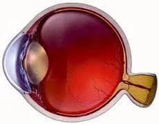 Refractive Cataract Surgery