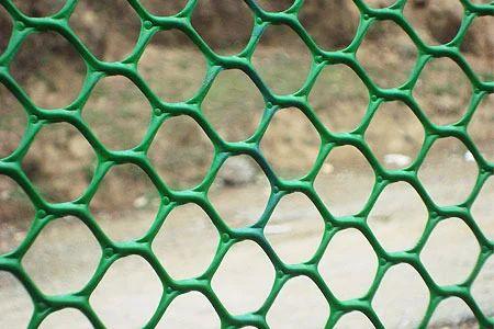 Plastic Jali Hexagonal Plastic Jali Wholesale Trader