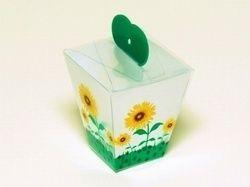 Printed PVC Boxes