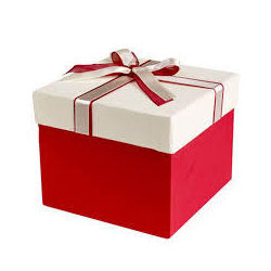 Gift packaging box in indore madhya pradesh gift packing boxes decorative packaging boxes negle Image collections
